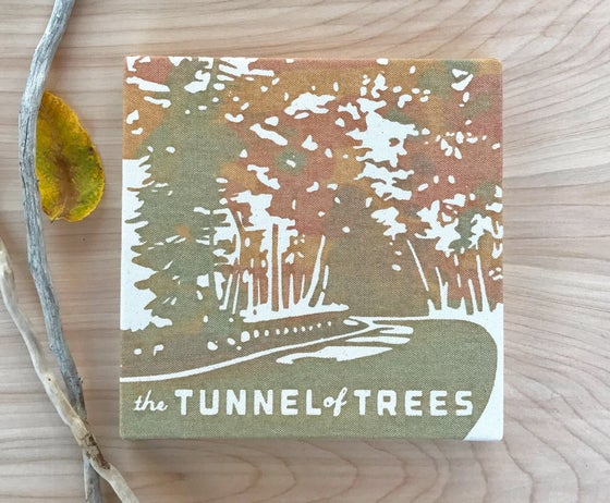 Image of Tunnel of Trees