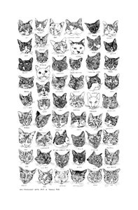 Image of My friends' cats and a token dog. Tea towel