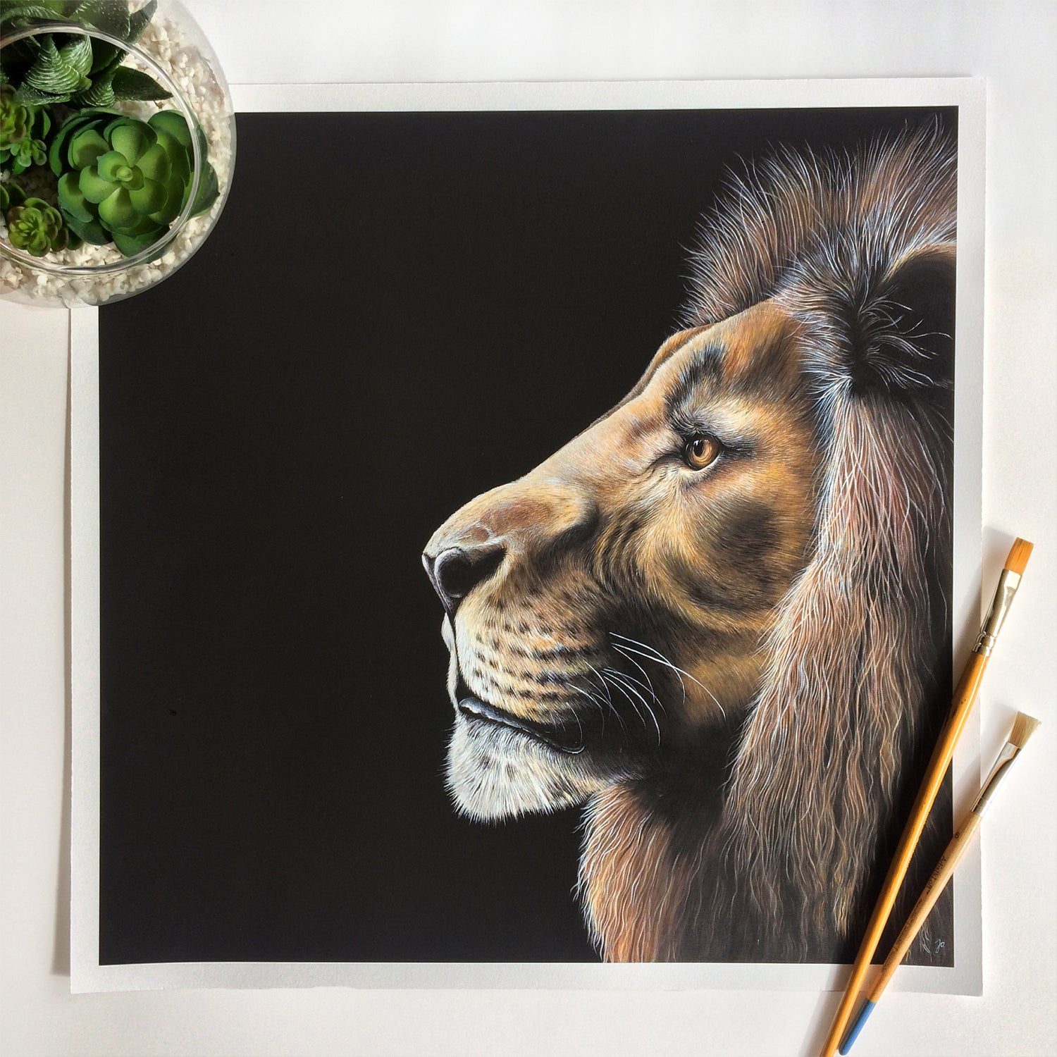 Image of Lion - High Quality Print (various sizes)
