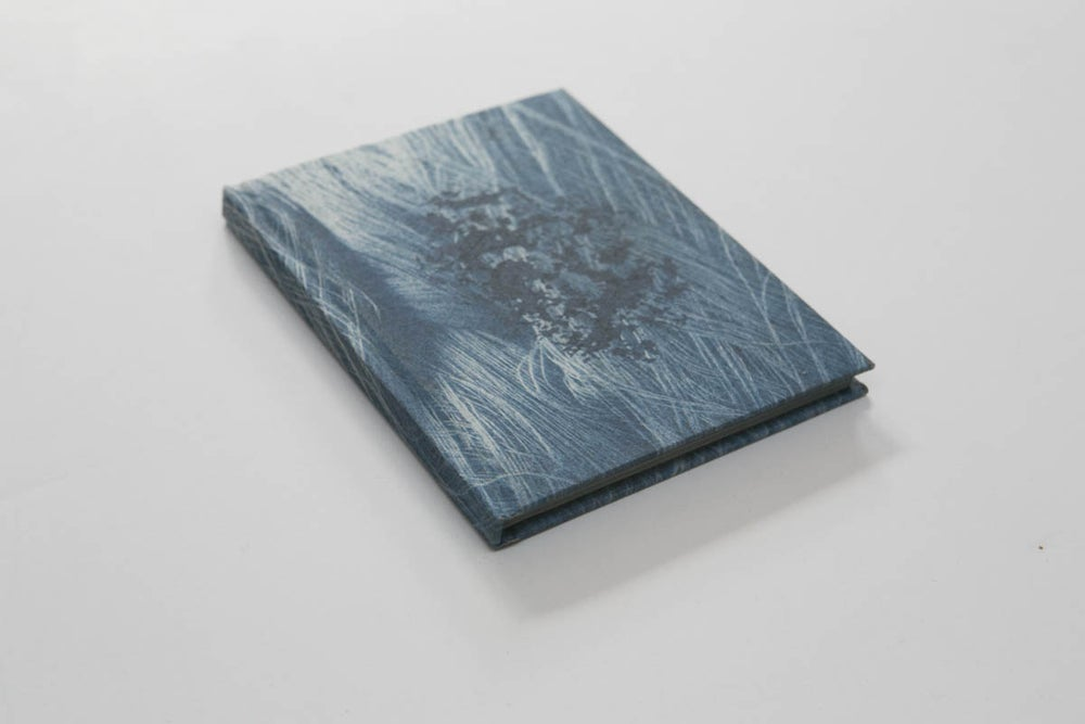 Image of Layers That Swallow (Artist Book)