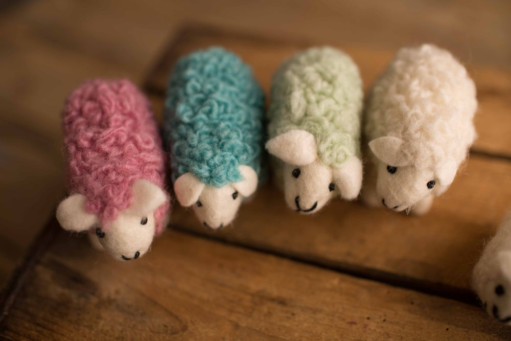 Image of Felted Sheep Lovies