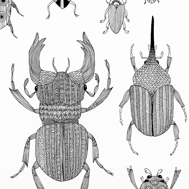 Image of Large Print: Beetles