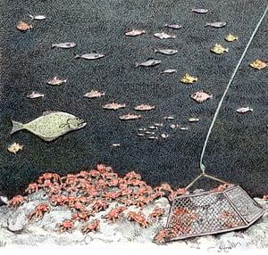 """Image of Crab Pot No. 2 12"""" X 15"""""""