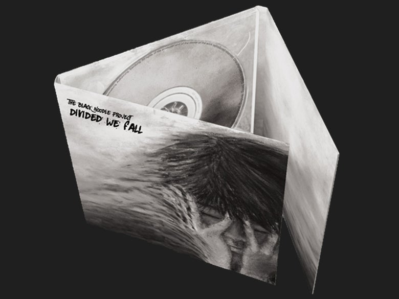 Image of THE BLACK NOODLE PROJECT - Divided We Fall - Digipack CD