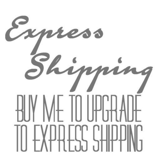 Image of Use this option to Upgrade your Standard Shipping to Express shipping Only