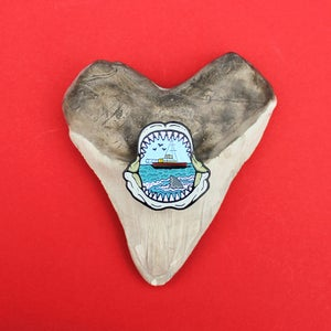 Image of Shark mouth enamel pin - teeth / jaws - shark attack - lapel pin badge