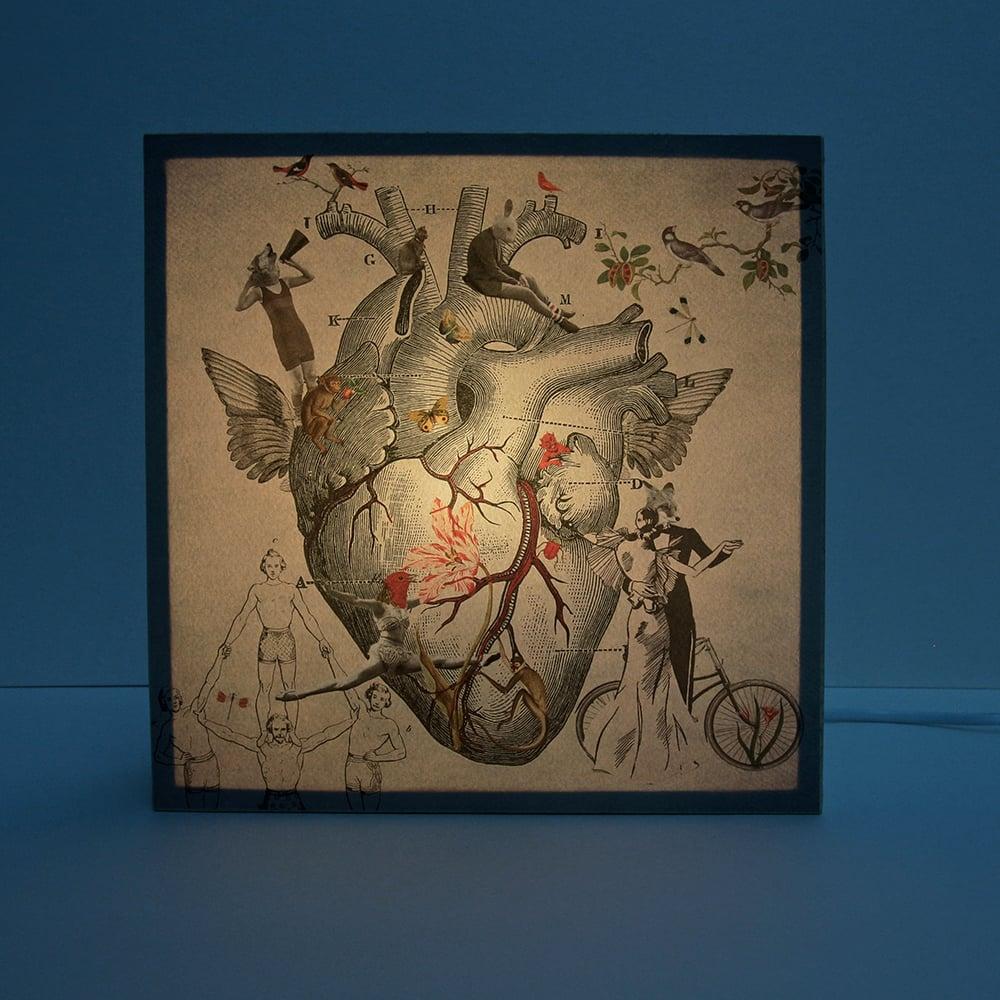 Image of Corazón nido