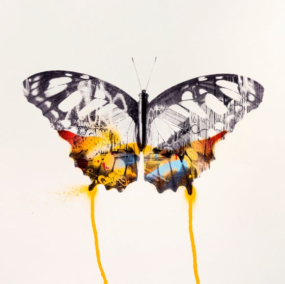 Image of Graffiti Butterfly (Orange)