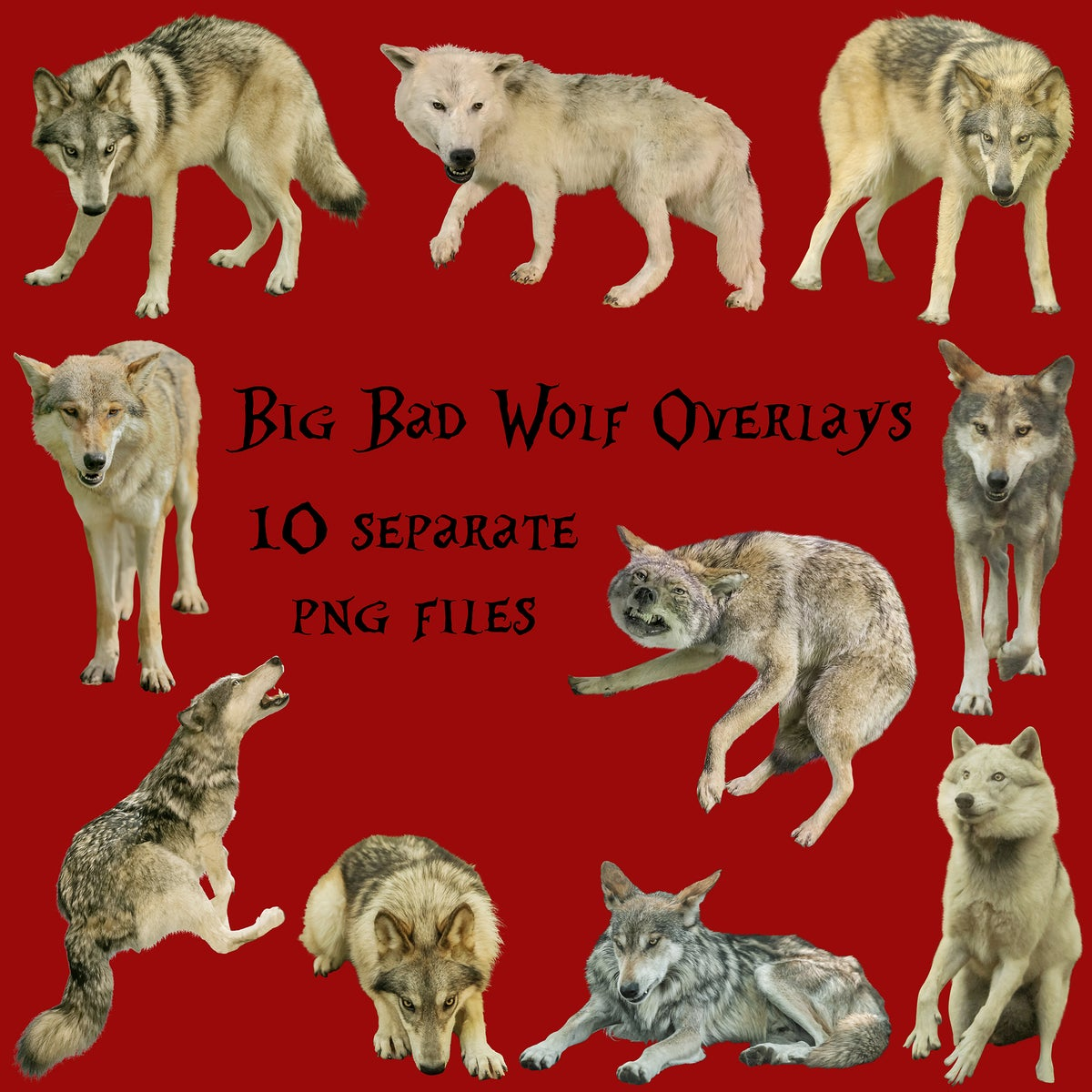 Image of Big Bad Wolf Overlays