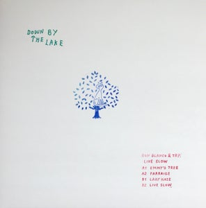 Image of Down By The Lake 02 - Ron Blanco & TRP - Live Slow - 12""
