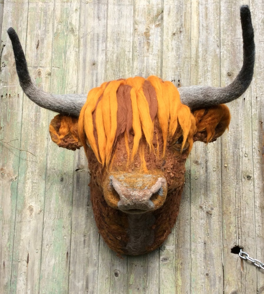 Image of Gille, the Highland Bull. Faux Taxidermy Collection.