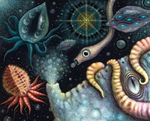 "Image of ORIGINAL PAINTING ~ Cephalopods II - 15 X 15""/Framed 21 x 21"""