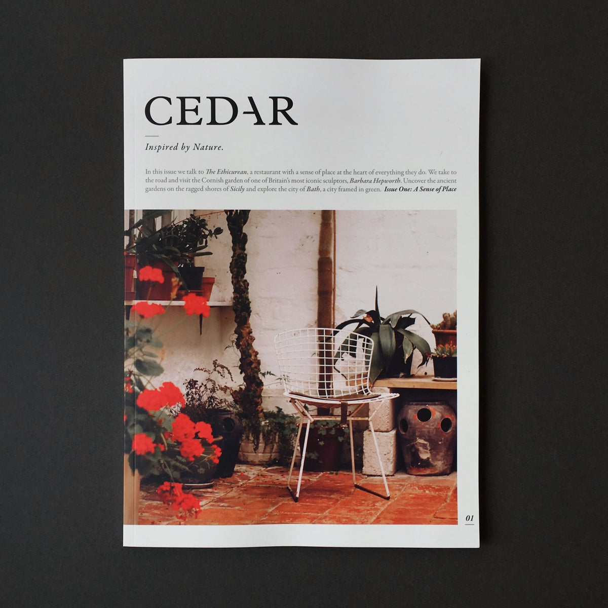 Image of 'Cedar' Magazine.