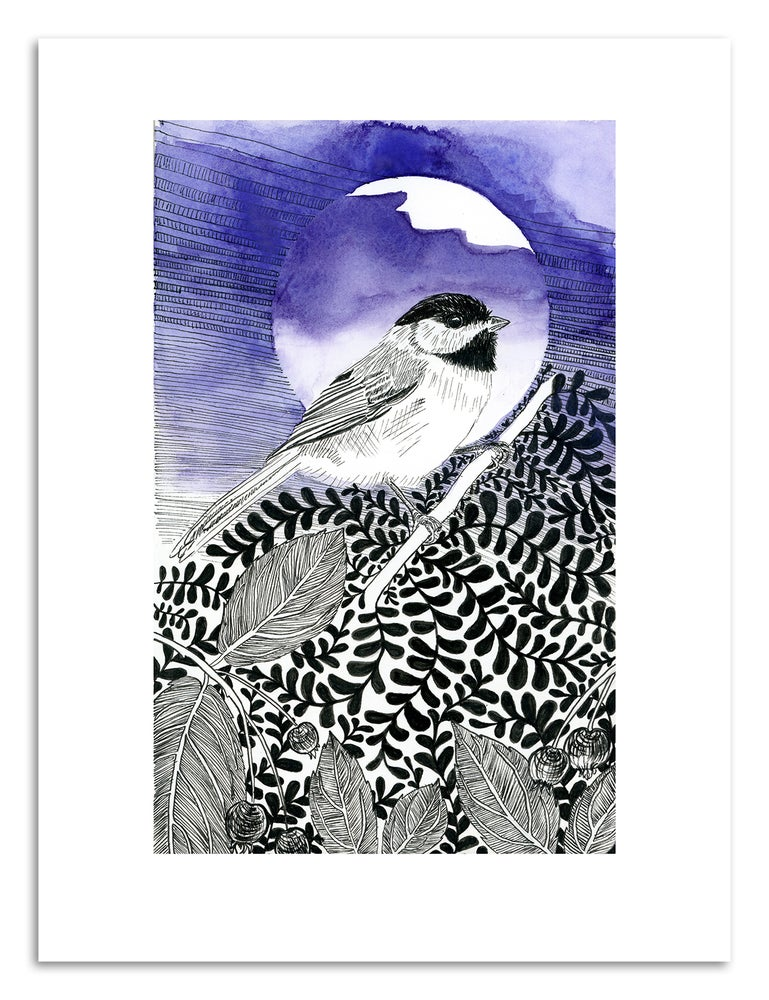 Image of CHICKADEE KING: 9X12 INCH LIMITED EDITION PRINT