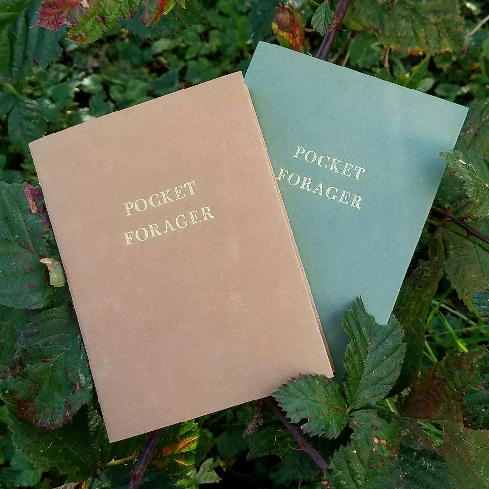 Image of Pocket Forager Notebook