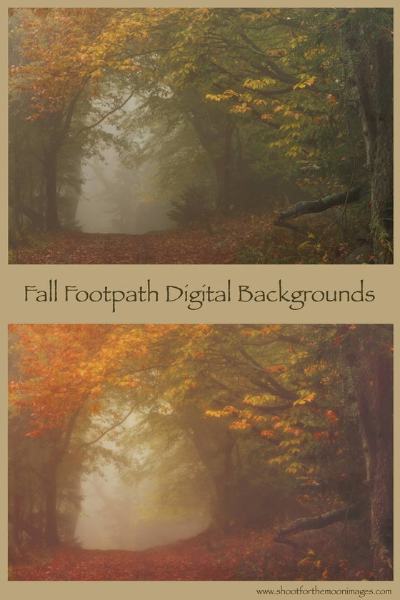 Image of FALL FOOTPATH DIGITAL BACKGROUNDS