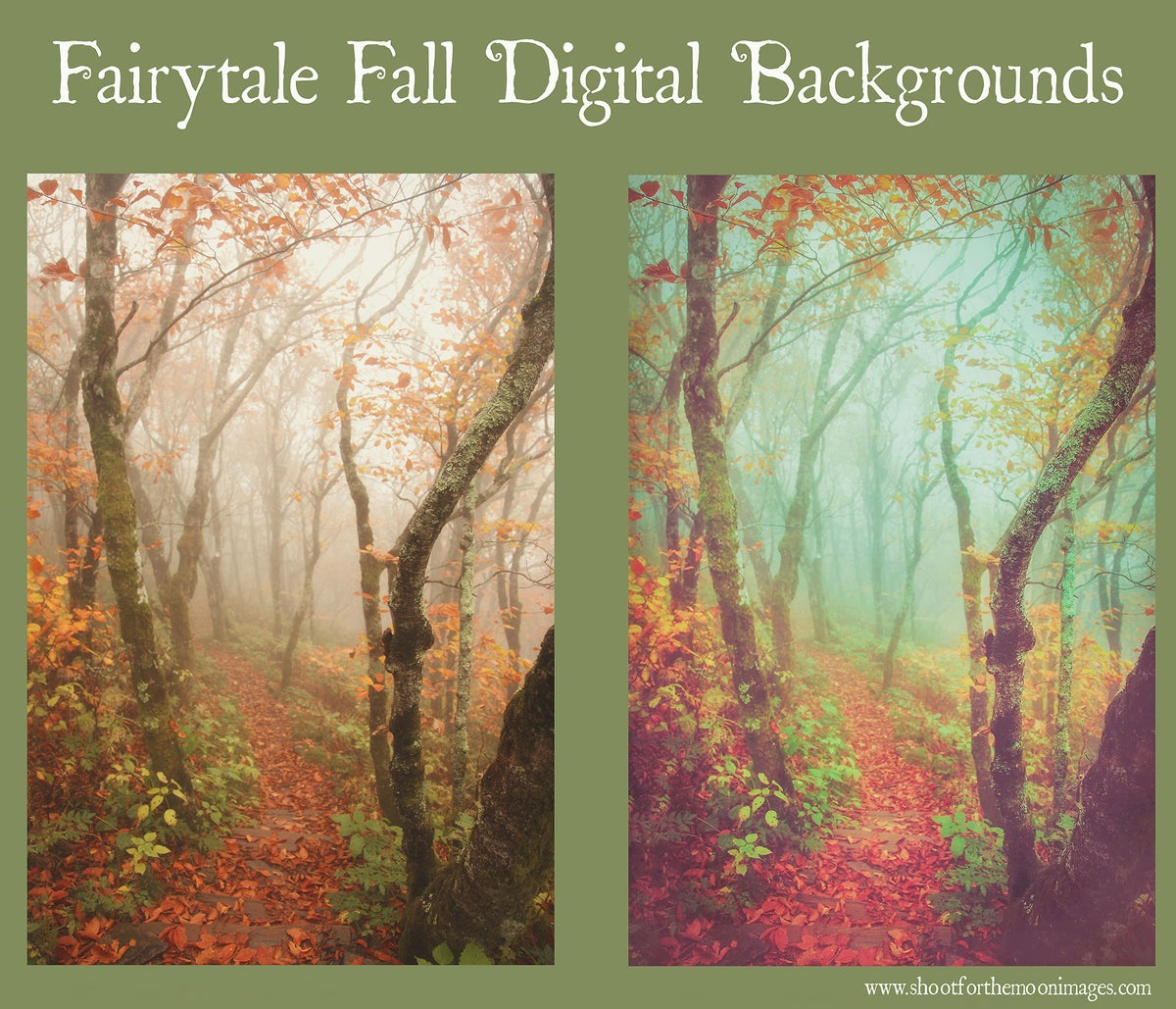 Image of Fairytale Fall Digital Backgrounds