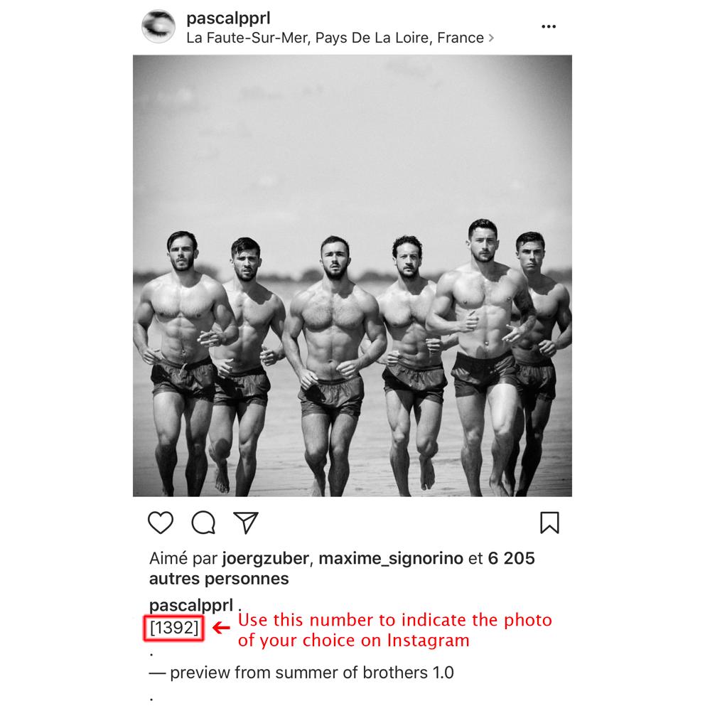 Image of PRINT / TIRAGE