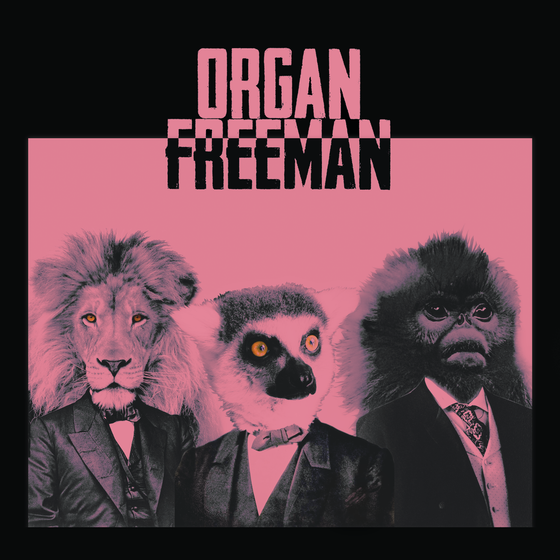 Image of Organ Freeman Self-Titled CD