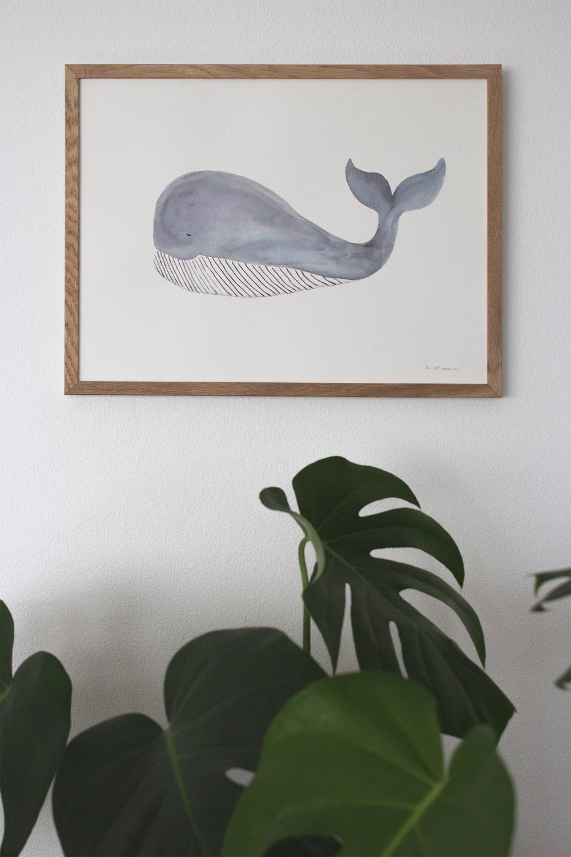 Image of Original akvarel, hval