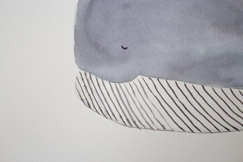 Image of Original akvarel, hval | (30x40 cm)