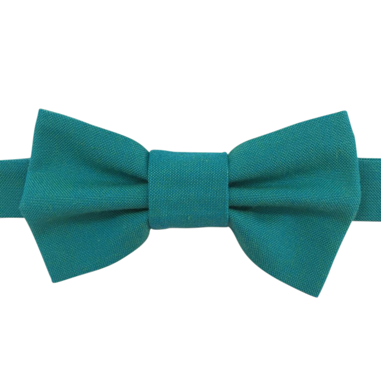 Image of lagoon chambray bow tie