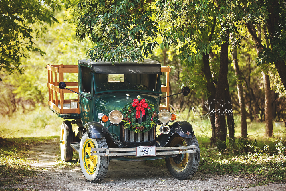 Image of Vintage Truck Family Mini Sessions