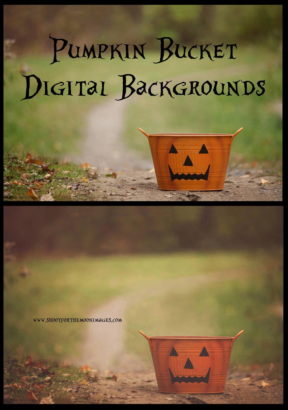Image of Pumpkin Bucket Digital Backgrounds