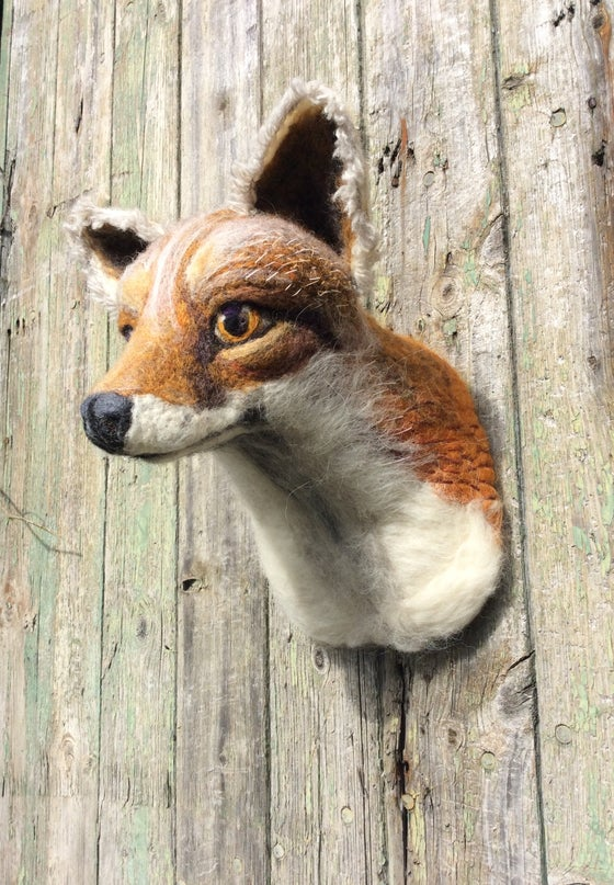 Image of Fox.( Faux Taxidermy Collection.)