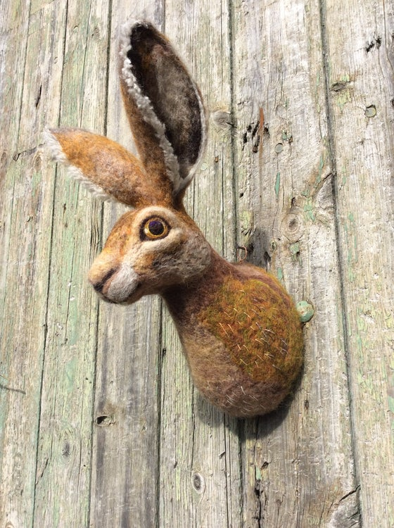 Image of Hare. (Faux Taxidermy Collection.)