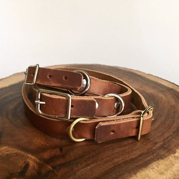 Image of Saddle Leather Dog Collar