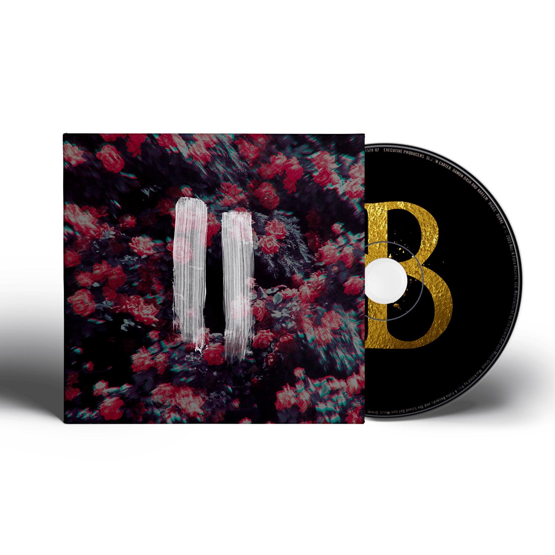 Image of VIVA BROTHER - II (Signed Album)