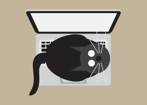 Laptop Cat
