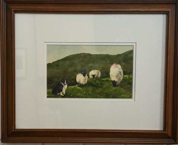 Image of Untitled: Dog with Marked Sheep