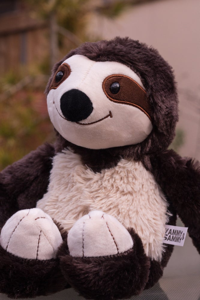 Image of Sammy The Sloth Plushie
