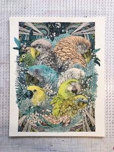 Image of Jungle Book - Parrots