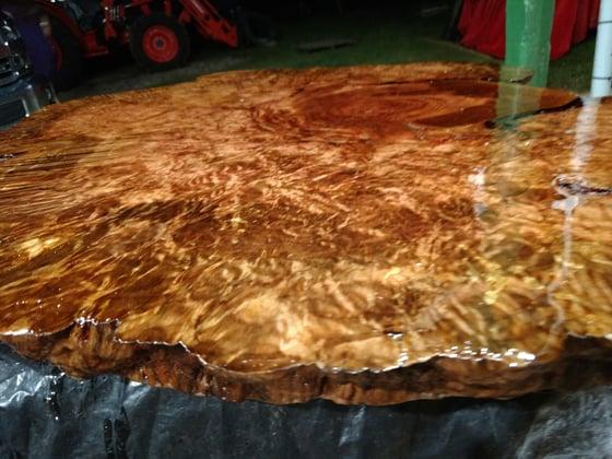Image of Red Bay Burl Slab