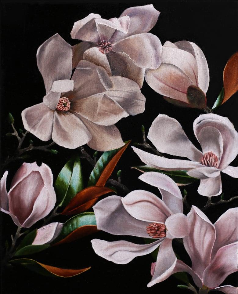 Image of Magnolias en Noir