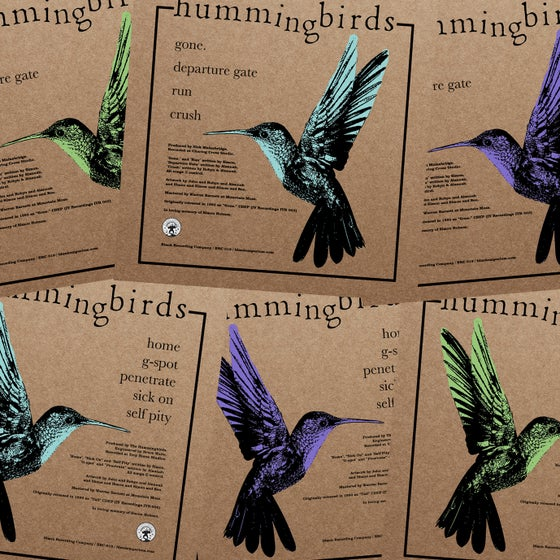 Image of The Hummingbirds