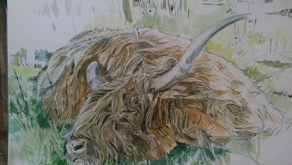 Image of Let sleeping cows lie