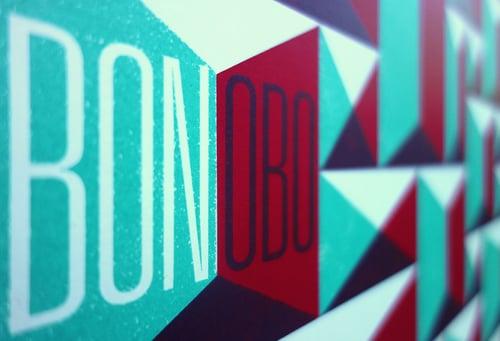Image of BONOBO 01