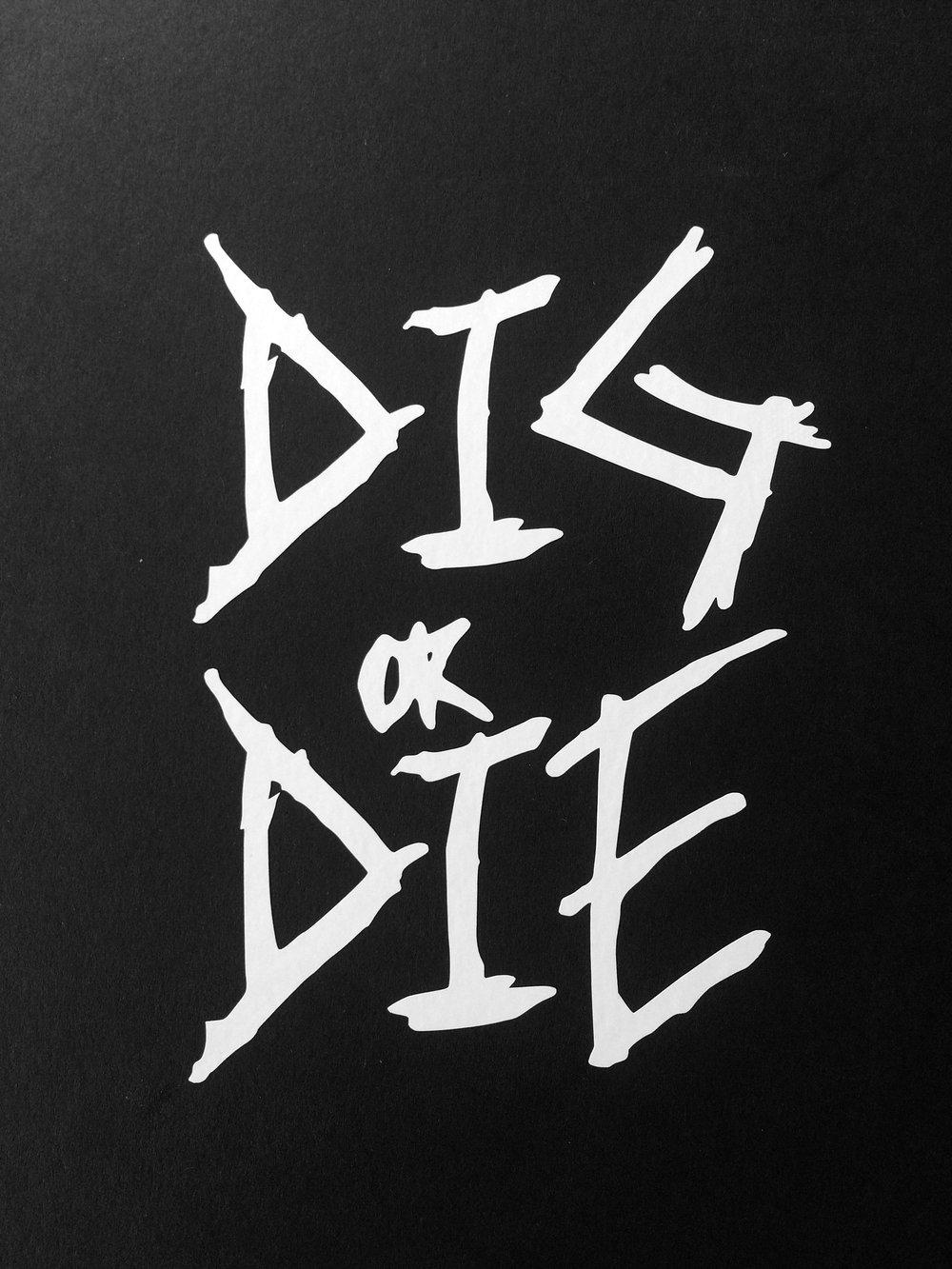 Image of DIG or DIE vinyl