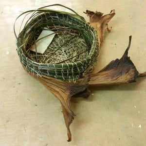 Image of Basketry Coiling with Plants Workshop Sunday 3rd November 10am - 3:30pm @The Makers Studio