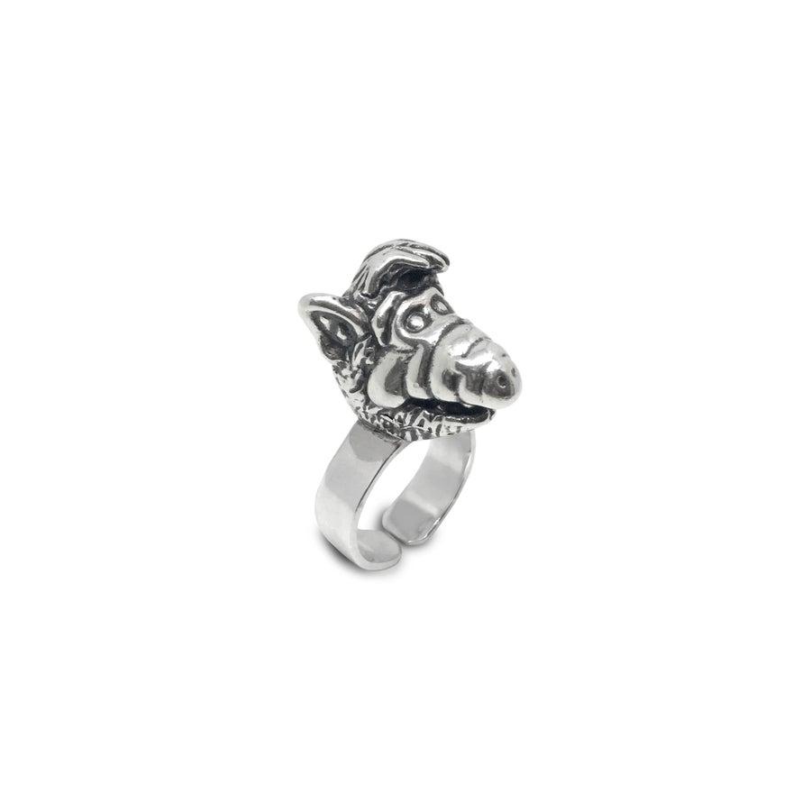Image of Silver Ring  / Anillo MELMAC plata