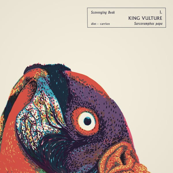 KING VULTURE - Sorry.