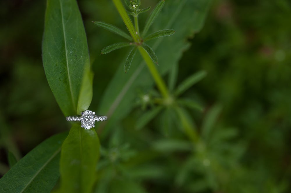 Image of Wedding / Engagement Albums