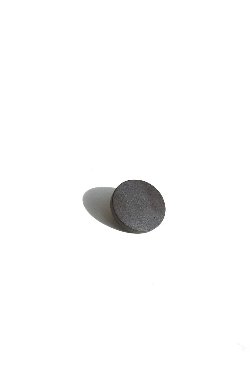Image of disc earring