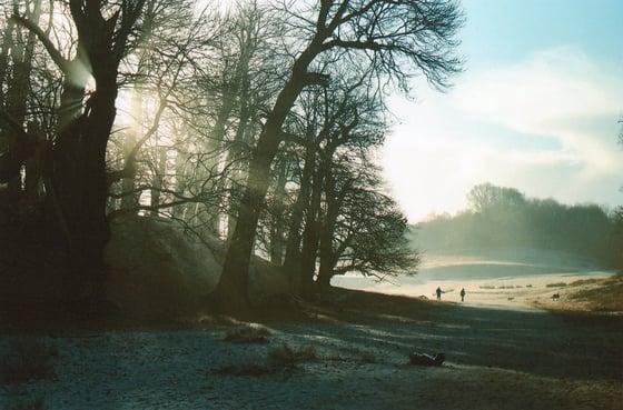 Image of Knole Park Sunrise