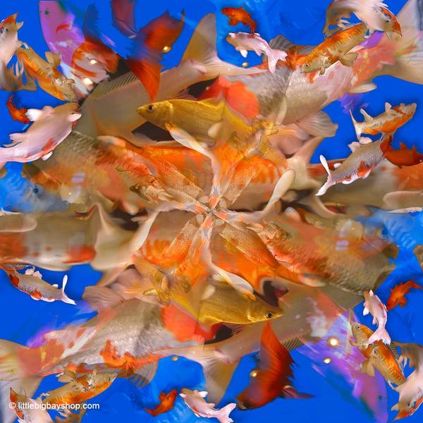 Image of Goldfish Mandala