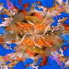 Goldfish Mandala